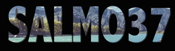 salmo-37-1900-x-1080
